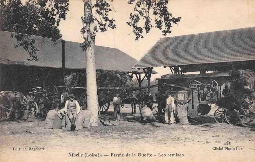 45-Nibelle-3 (Leveillé Nizerolle)