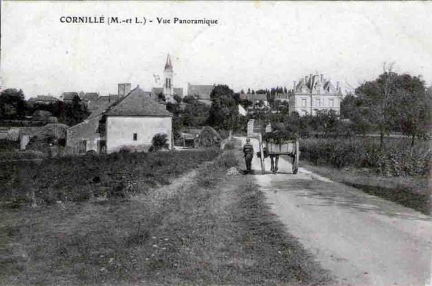 49-Cornille