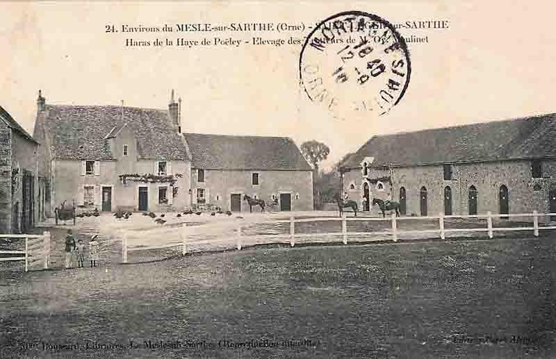 61 saint leger sur sarthe le haras de poeley vers 1909 1910