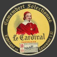 Cardinal-002.jpg