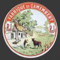 Anjou-10nv (CamRL-01)
