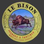 bison-03.jpg