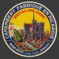 Catdle amiens 1
