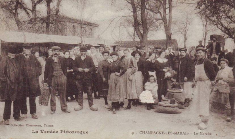 Champagné-les-M