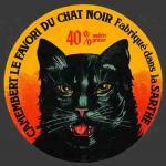 Chat-72bnv (Sarthe 72b)