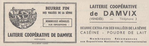 Damvix pub 05