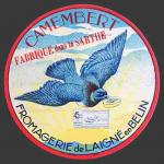 Demarest-11 (pigeon 11nv)