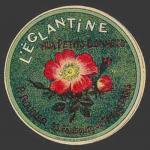Eglantine-03nv (Boudier-03)