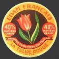 Gironde-53nv (tulipe 53)
