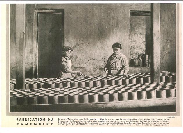 Illust-1015 fabrication du camembert courtonne nv
