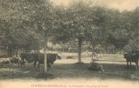 Lavalou-fromagerie-10