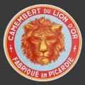lion-010-1.jpg