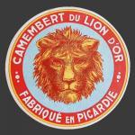 lion-010.jpg