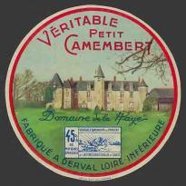 Loire-At-501 (Derval 501nv)