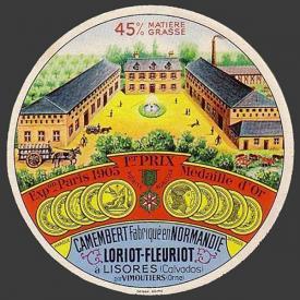 Loriot fleuriot (Lisores 14anv)