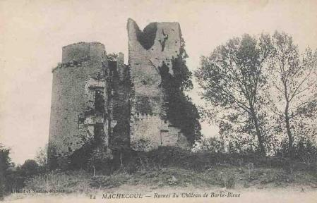 Machecoul ruines chat