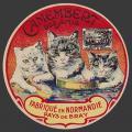 Oise-120nv (oise chats 01)