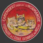 Oise-125nv (oise chats 05)