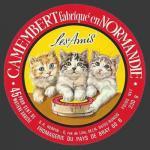 Oise-128nv (oise chats 08)