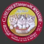 Oise-129nv (oise chats 09)