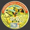 Oiseaux-17nv (PHebert-107)