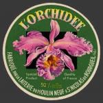 Orchidee-1nv (StNicBourgueil