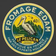 pelican-1-1.jpg