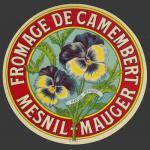 Pensée-01nv (Mesnil Mauger)