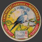 Somme-130nv (perruche 02b)