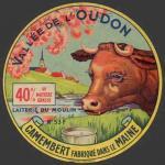 Vache-Oudon-3 (Besnier-53nv)