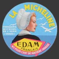 Vendée-55nv (Michel l'Herm)