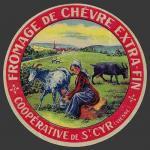 Vienne-123nv (Saint-Cyr)